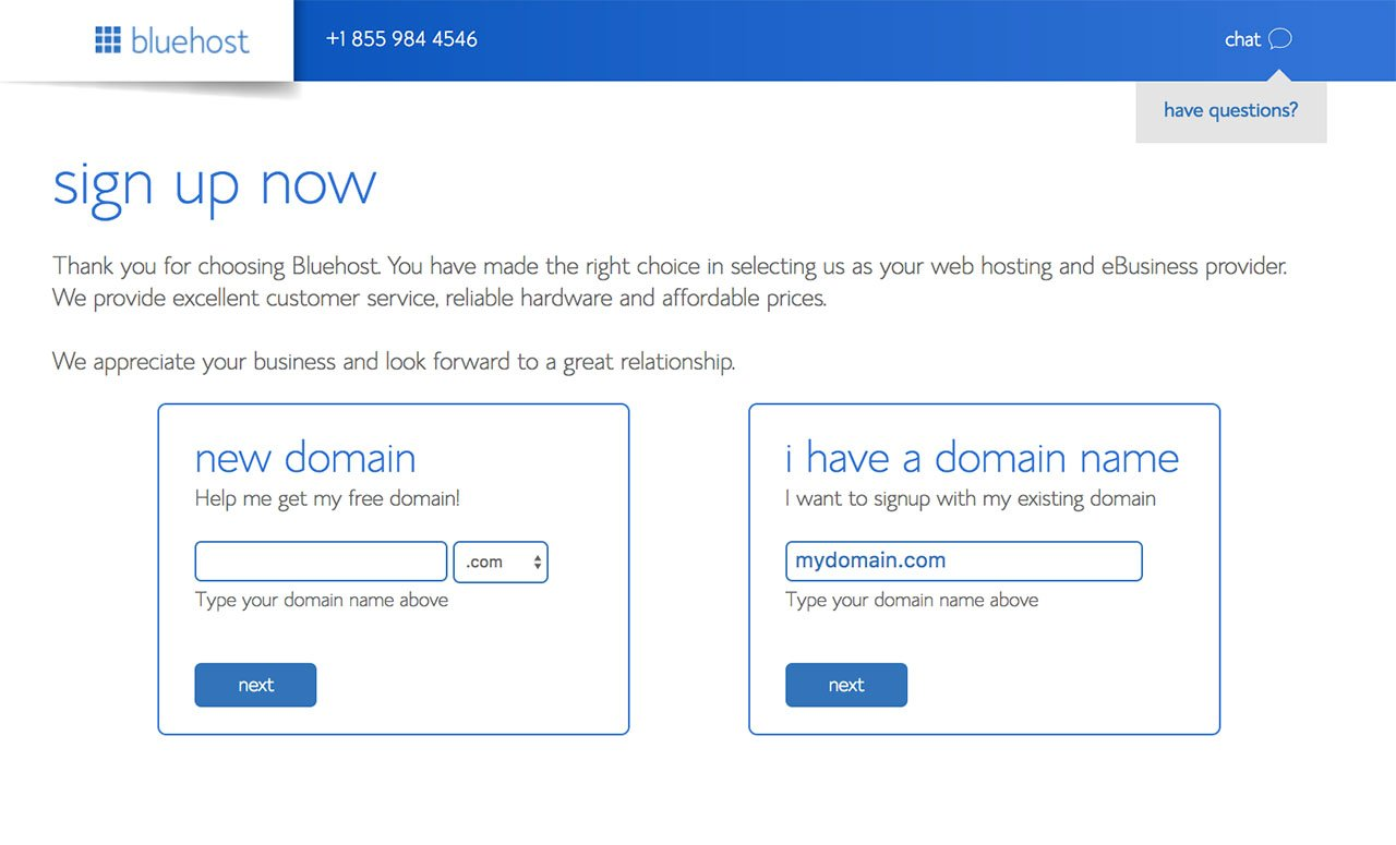 Bluehost Domain Name Option